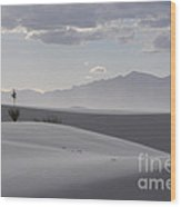 Sand Dunes Light And Shadow Wood Print