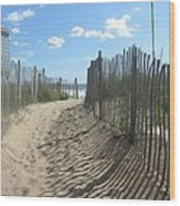 Sand Fence At Southern Shores  Wood Print by Cathy Lindsey