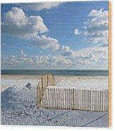 Sand Fence Wood Print