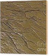 Sand Impressions Wood Print
