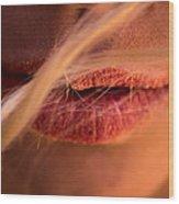 Sand Kissed Lips Wood Print