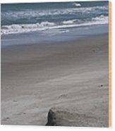 Sand Mogul On Florida Beach Wood Print