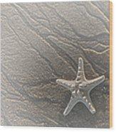 Sand Prints And Starfish II Wood Print