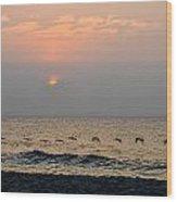 Sand Sea Sun Wood Print