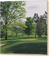 Sand Traps On A Golf Course, Baltimore Wood Print