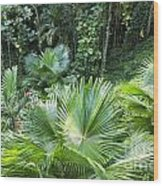 Sandals Royal Plantation Greenery Wood Print