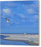 Sandbar Bliss Wood Print