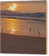 Sanderlings At Sunrise Wood Print