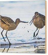 Sanderlings Playing At The Beach Wood Print