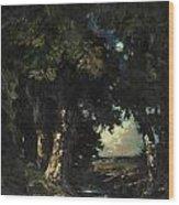 Sandersons Brook Wood Print