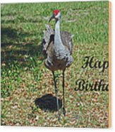 Sandhill Crane Birthday Wood Print