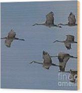 Sandhill Crane Group Wood Print