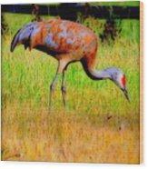 Sandhill Crane I Wood Print
