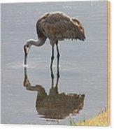Sandhill Crane On Sparkling Pond Wood Print by Carol Groenen