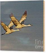 Sandhill Crane Pair Wood Print