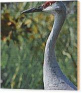 Sandhill Crane Profile Wood Print