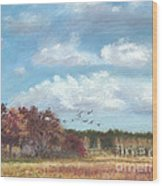 Sandhill Cranes At Crex With Birch  Wood Print by Jymme Golden