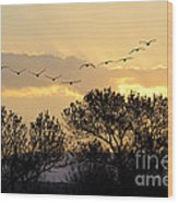 Sandhill Cranes Flying At Sunset Wood Print