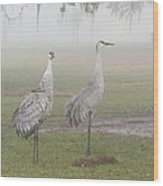 Sandhill Cranes In A Foggy Morning Wood Print
