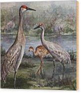 Sandhill Cranes On Alert Wood Print