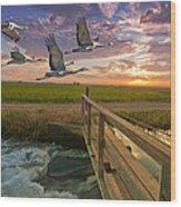 Sandhill Cranes Over Rice Fields Wood Print