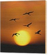 Sandhill Sunset Wood Print