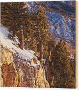 Sandia Peak Summit Albuquerque New Mexico Wood Print