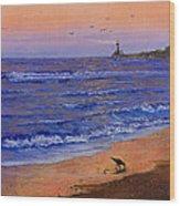 Sandpiper At Sunset Wood Print