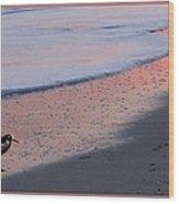 Sandpiper At Sunset Print Wood Print