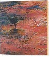 Sandpiper Cape May Wood Print