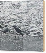 Sandpiper Finds Food In Surf Wood Print