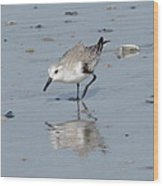 Sandpiper Reflection Wood Print