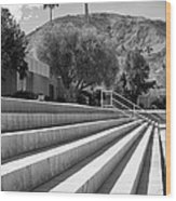 Sandpiper Stairs Bw Palm Desert Wood Print by William Dey