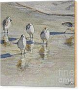 Sandpipers 2 Watercolor 5-13-12 Julianne Felton Wood Print