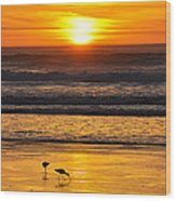 Sandpipers At Sunset Wood Print