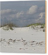 Sandpipers On Dune Wood Print