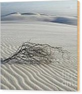 Sands Of Time Brazil Wood Print