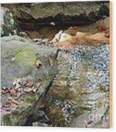 Sandstone Boulders At Hurricane Branch Wood Print