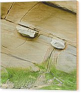 Sandstone Color Spectrum Wood Print