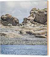 Sandstone Island Sculptures Wood Print