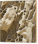 Sandstone Rock Formation Two At Big Sur  Wood Print by Artist and Photographer Laura Wrede