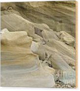 Sandstone Sediment Smoothed And Rounded By Water Wood Print