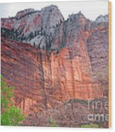 Sandstone Wall In Zion Wood Print by Robert Bales