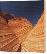 Sandstone Waves Wood Print