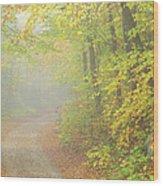 Sandwich Notch Road - Sandwich New Hampshire Usa Wood Print