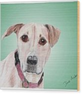 Sandy - A Former Shelter Sweetie Wood Print