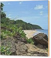 Sandy Beach At Rincon Pr Wood Print