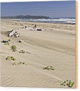 Sandy Beach On Pacific Ocean In Canada Wood Print