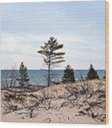 Sandy Dune Wood Print