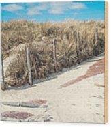 Sandy Dunes In Holland Wood Print